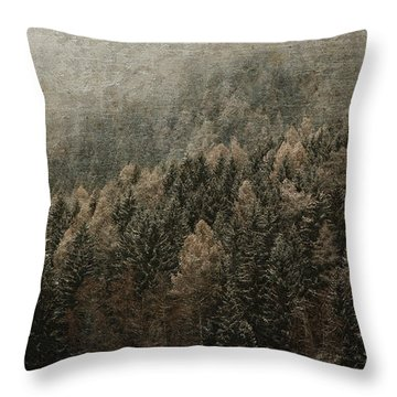 Woods In Winter Throw Pillow