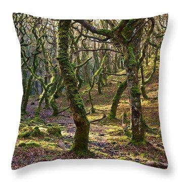Woods Near Badgeworthy Water Exmoor Throw Pillow
