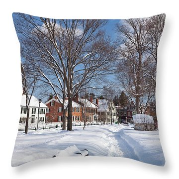 Woodstock Green Throw Pillow