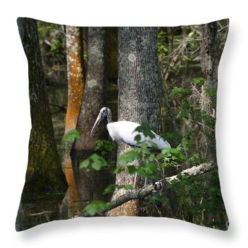 Woodstorks Swamp Throw Pillow by Kathy Gibbons