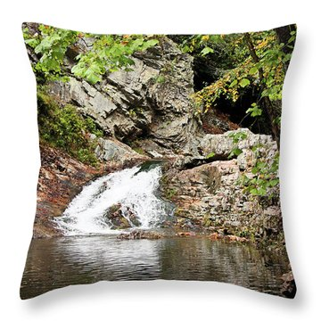 Throw Pillow featuring the photograph Woodsy Flow by Kristin Elmquist