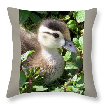 Woody Duckling Throw Pillow