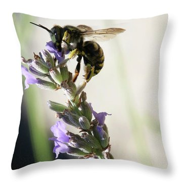 Throw Pillow featuring the photograph Wool Carder by Rasma Bertz
