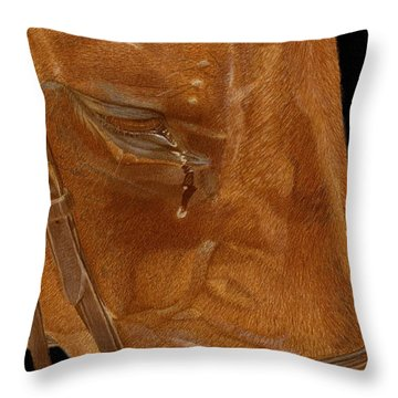 Workhorse Blues - Horse Painting Throw Pillow by Patricia Barmatz