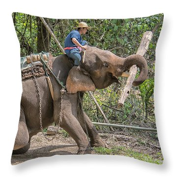 Working Elephant Throw Pillow by Wade Aiken