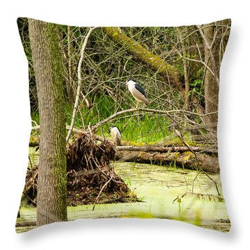 Working In Pairs Throw Pillow
