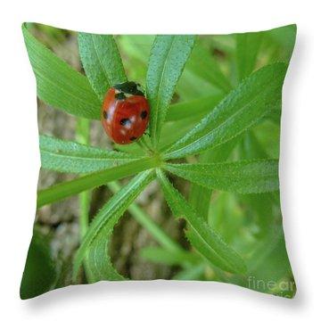 World Of Ladybug 3 Throw Pillow by Jean Bernard Roussilhe