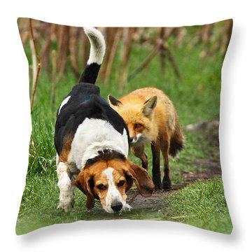 Rare Throw Pillows
