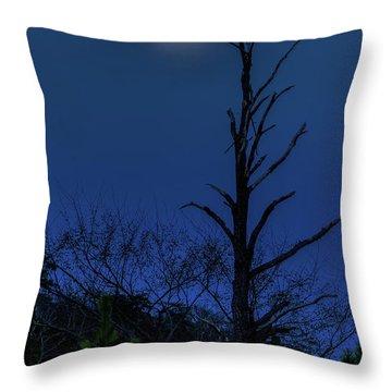 Worm Moon Throw Pillow