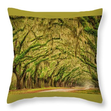 Wormsloe Drive Throw Pillow