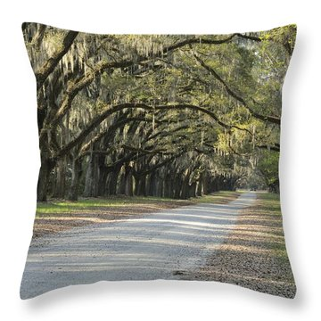 Wormsloe Entrance Road Throw Pillow