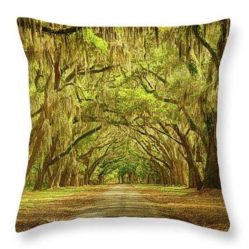 Wormsloe Plantation Oaks Throw Pillow