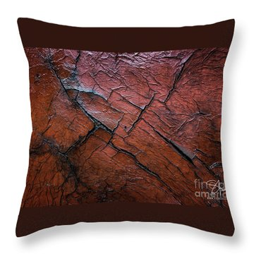 Worn And Weathered Throw Pillow