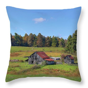 Worn Out Throw Pillow by Sharon Batdorf