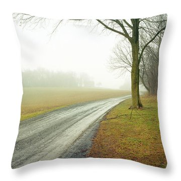 Worthington Lane Throw Pillow