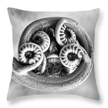 Wound Up Tight In Bw Throw Pillow