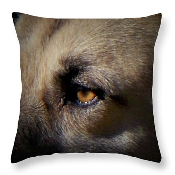Throw Pillow featuring the photograph Wounded by Betty Northcutt