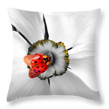 Wow Ladybug Is Hot Today Throw Pillow