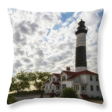 Throw Pillow featuring the photograph Wowed by Heather Kenward