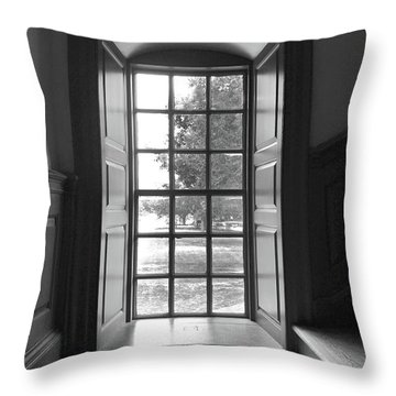 Wren Building Window Throw Pillow