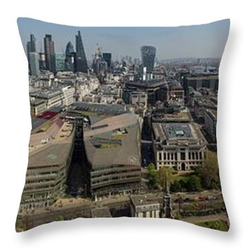 Wrens View Throw Pillow