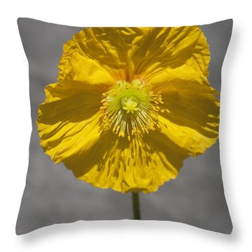 Wrinkled Beauty Throw Pillow