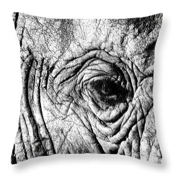 Wrinkled Eye Throw Pillow