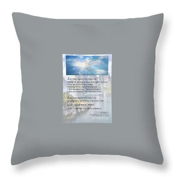 Writer, Artist, Phd. Throw Pillow by Dothlyn Morris Sterling