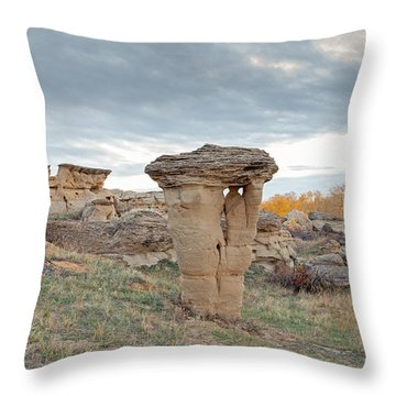 Throw Pillow featuring the photograph Writing On Stone Park by Fran Riley