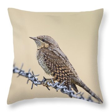 Wryneck On Wire Throw Pillow