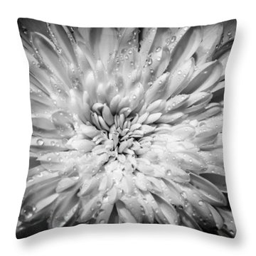 WX3 Throw Pillow