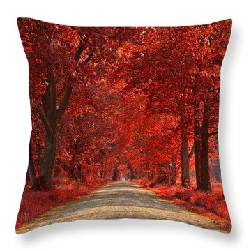 Wye Island Ruby Road Throw Pillow