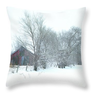 Wyeth Winter Throw Pillow