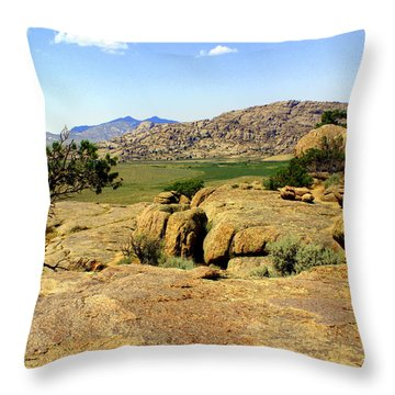 Wyoming Landscape Throw Pillow by Marty Koch