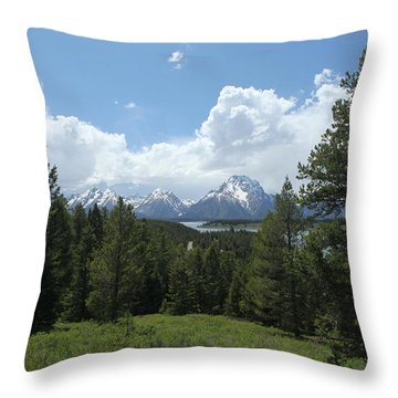 Wyoming 6500 Throw Pillow