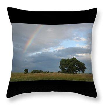 Wyoming Rainbow Throw Pillow