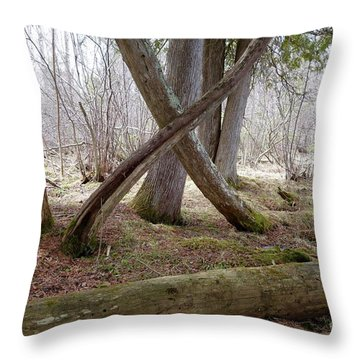 X Marks The Spot Throw Pillow by Sandra Updyke