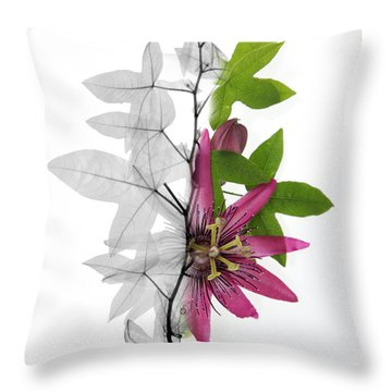 X-ray Of A Passion Flower Throw Pillow by Ted Kinsman