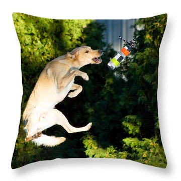 X-treme Airdogs 4 Throw Pillow