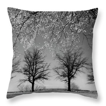 x4 Throw Pillow