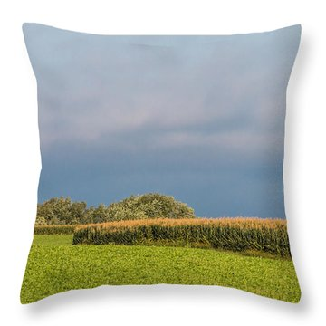 Throw Pillow featuring the photograph Farmer's Field by Patti Deters