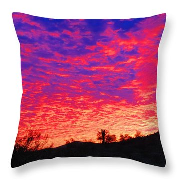 Y Cactus Sunset 1 Throw Pillow