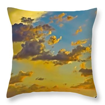 Y Cactus Sunset 10 Throw Pillow