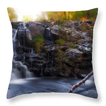 Yacolt Falls In Autumn Throw Pillow by David Gn