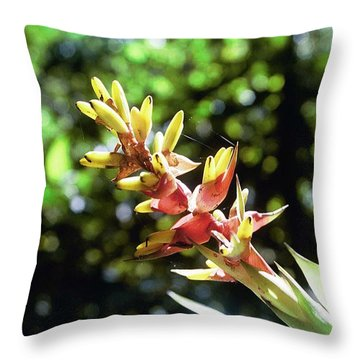 Yado Throw Pillow