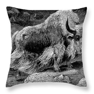 YAK Throw Pillow by Granger