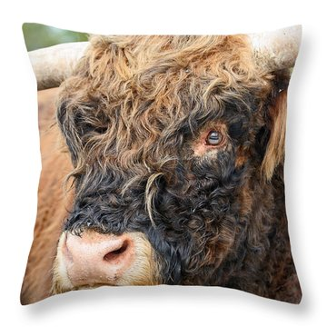 Yakity Yak Throw Pillow by Karol Livote