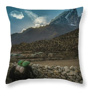 Throw Pillow featuring the photograph Yaks Moving Through Dingboche by Mike Reid