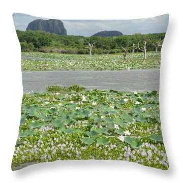Yala National Park Throw Pillow