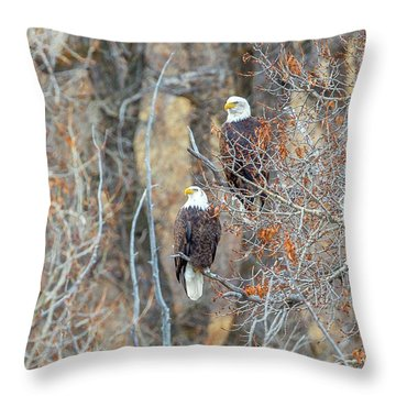 Yampa Couple  Throw Pillow